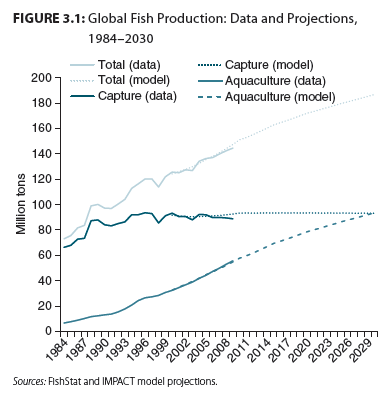漁業生産の過去の変動と将来予測